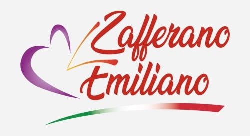 Realizzazione Siti Web Piacenza - Zafferano Emiliano